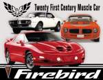 pellistä juliste Firebird 40x31cm